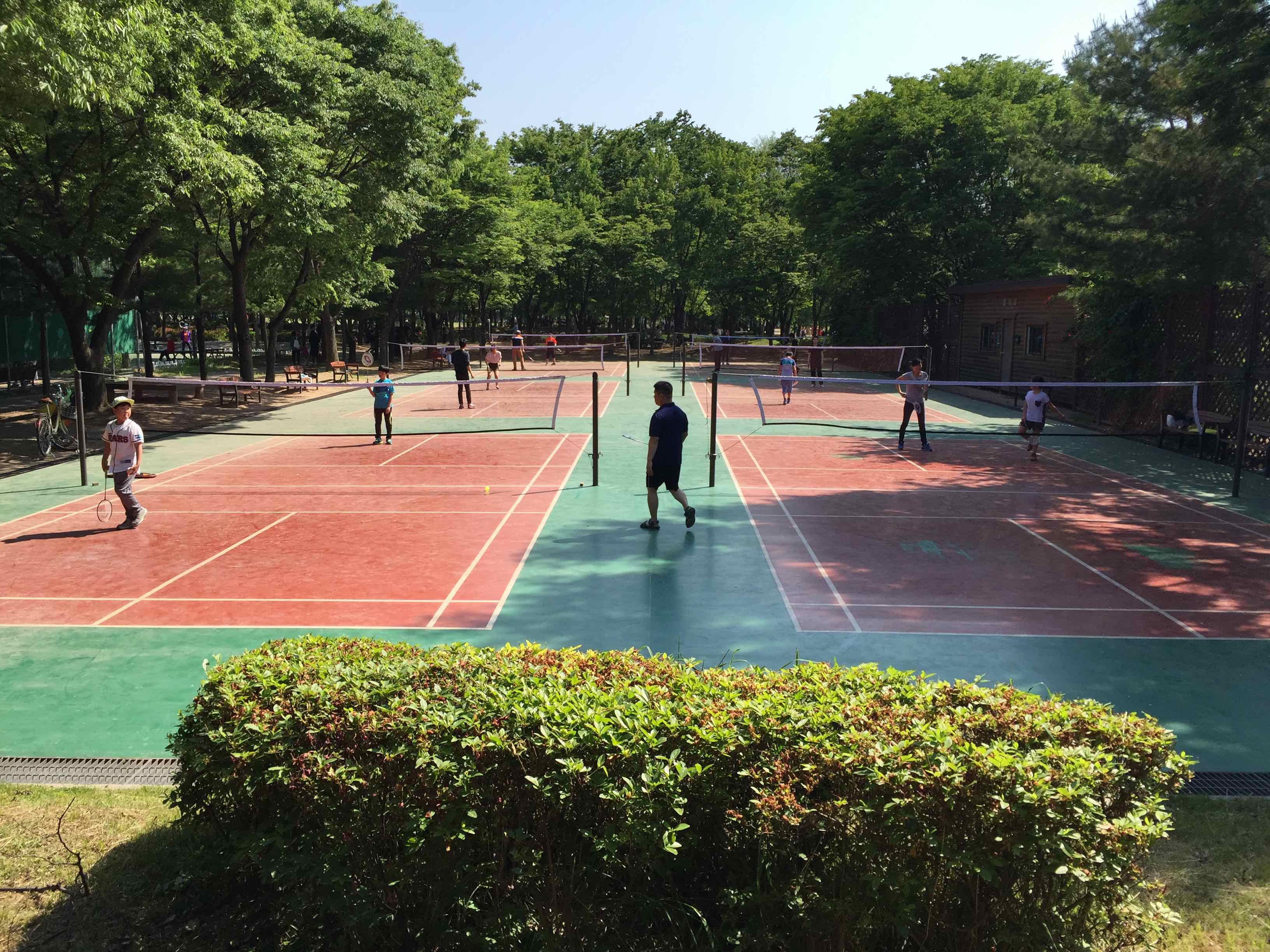 Badminton at Seoul Forest Park